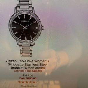 Citizens Eco-drive stainless steel watch